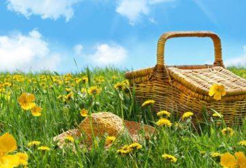 отдохнуть на майские праздники - пикник