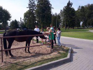 летние базы отдыха в нижегородской области, летний отдых детей